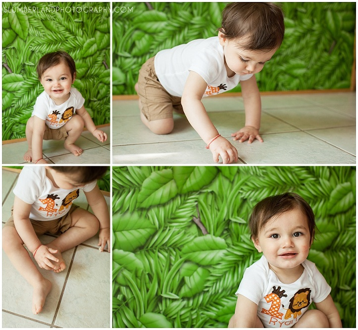 Jungle Themed First Birthday Aurora Slumberland Photography
